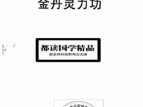 华山国术院特功灵修教材:金丹灵力功