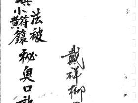 戴祥柳正一小黄符法秘奥口诀手抄法本