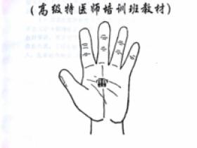 高级特医师培训班教材《五雷掌秘法》 五雷掌修炼及应用秘法