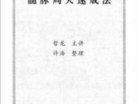 髓脉周天速成法 徐金龙 鹤鹿轩哲龙(赠动作讲解视频)电子版