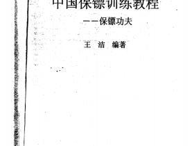 中国保镖训练教程172页电子版