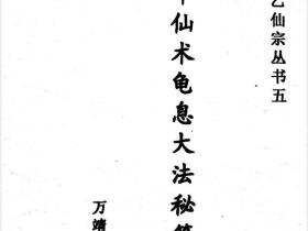 《中华仙术龟息大法秘笈》电子版内含三元神功 龟息大法 洗髓神功等