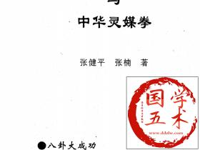 中国无极八卦大成功与中华灵媒拳张健平、张楠电子版