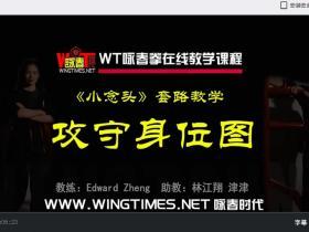 最详细的标准化咏春拳课程体系中文授课高清视频教程