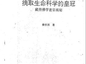 藏密神传法 甚深境修持函授教程87页电子版