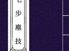 琅嬛书阁道教玄真门珍稀内部资料《七步尘技》电子版