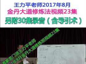 王力平老师2017年8月伊春金丹大道修炼班视频23集加录音30集
