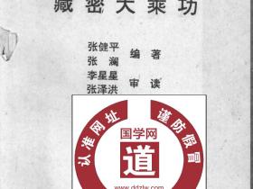 《藏密大乘功》 首次全面系统披露大乘功法 张健平 455页电子版
