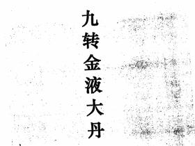 九转金液大丹【三元丹法研究丛书之五】(李康) 河南省太康三元丹法研究所