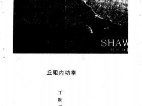 中国武学内功真传《丘祖内功拳》144页电子版