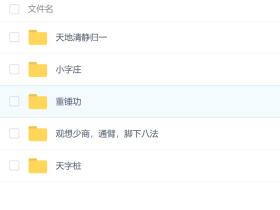 峨嵋临济灵悟气功2012视频资料