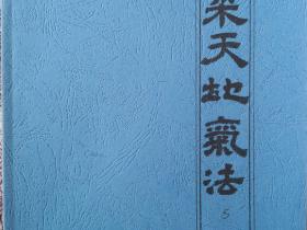 玄机九法秘笈之《采天地气法》56页电子版