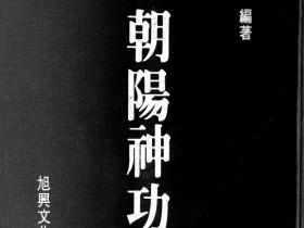 朝阳神功97面电子版